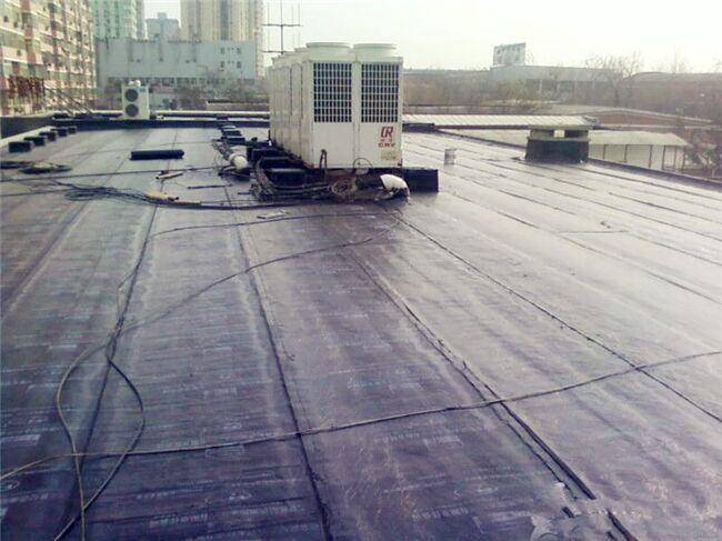 台州sbs楼顶防水