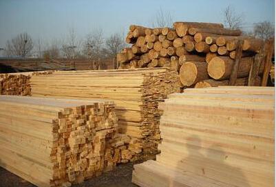广东杉木方条批发、广东木材加工厂