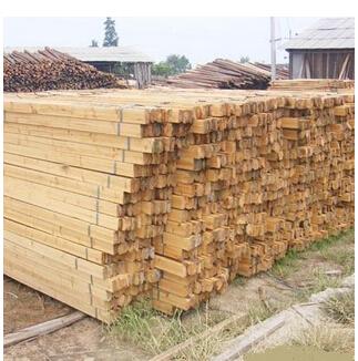 桂林杉木方,荔浦杉木方,广西木材价格