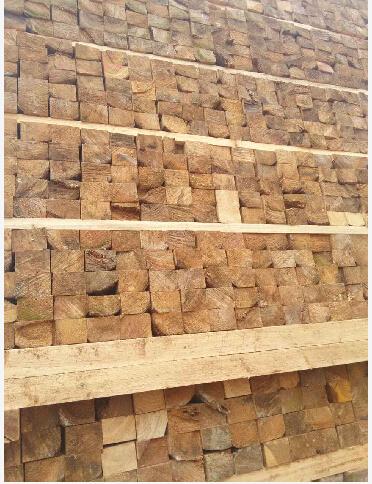 广西木方价格,桂林木方批发
