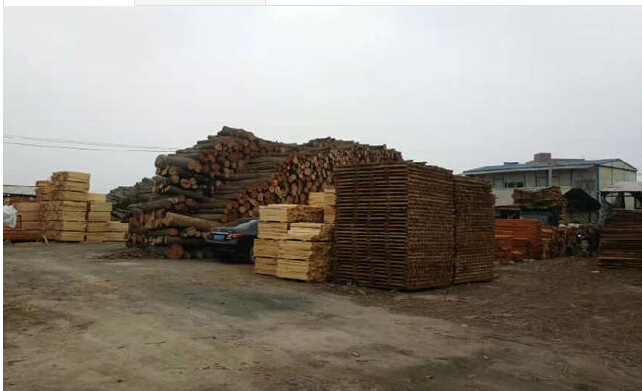广东木方,深圳木方,东莞木方,木材批发