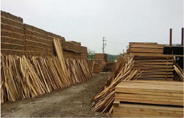 福建木材,福建杉木,福建杉木方条批发