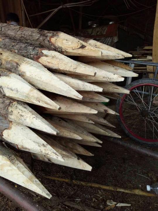 南宁松木桩