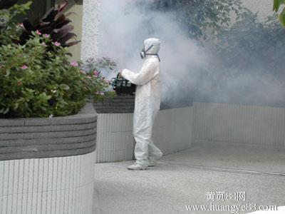 福州灭蟑螂、福州杀虫