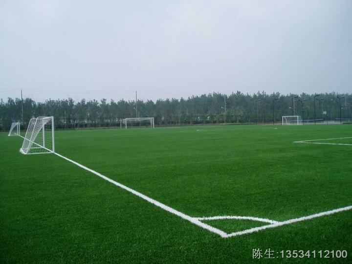 塘前中学足球场